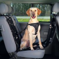 Auto-Schondecke für Hunde