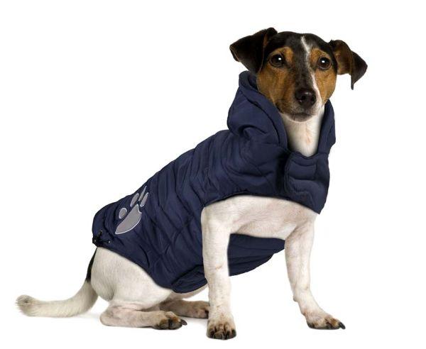 Hundemantel Paw