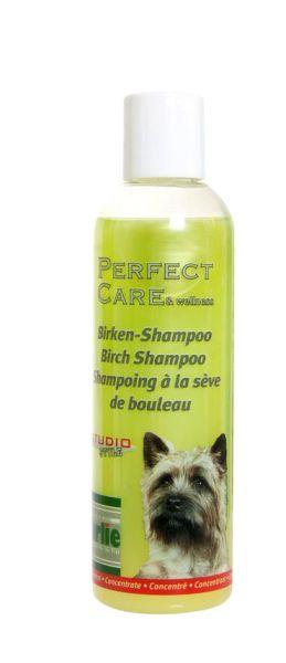 Perfect Care Birkenshampoo