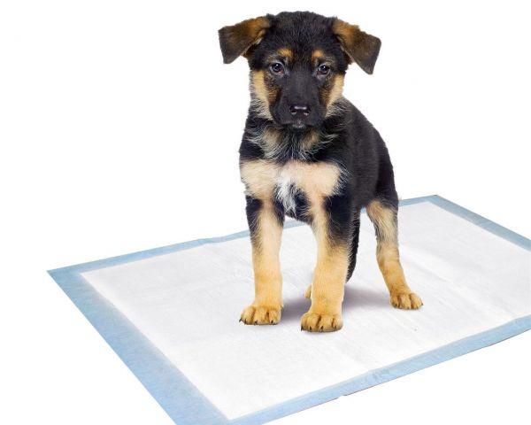 Puppy Pads Trainingsmatte 10 St., 60 x 40 cm
