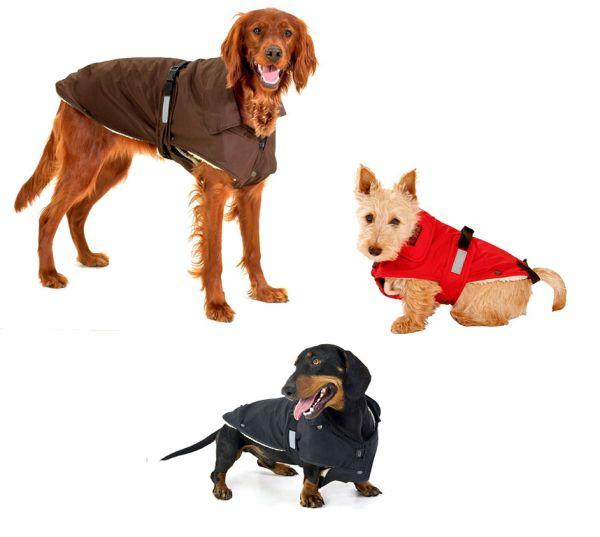 Hunde-Wintermantel No Limit