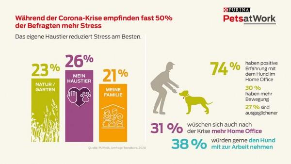 03-Purina-Pets-at-Work-Infografik-2020_Corona-Home-Office
